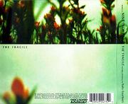 Fragileback