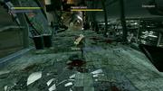 Impaler Leech