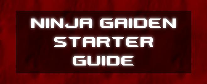 NinjaGaidenStarterGuideHeader