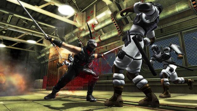 File:Ninja gaiden sigma profilelarge.jpg