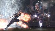 Sentry Ryu 403273-ninjagaiden260 Bull