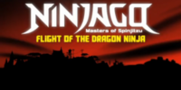 Flight of the Dragon Ninja