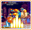 Fatal Fury Icon
