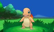 Pokémon X and Y screenshot 31