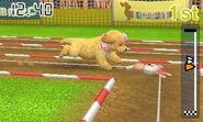 Nintendogs+Cat1 005