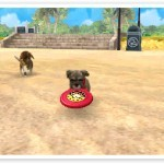 File:Dog with Disc2 (2).jpg