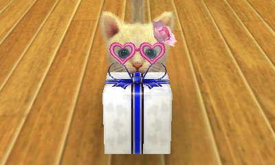 File:-Nintendogs Cats- 006.jpg
