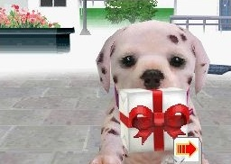 File:Dalmatian present.jpg