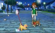 -Nintendogs Cats- 042