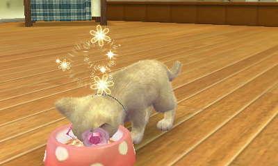 File:Nintendogs Cats 001.jpg