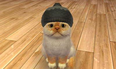 File:-Nintendogs Cats- 037.jpg