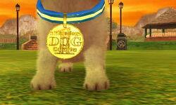 Dovahkiin Victory Collar