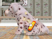 Earn-Money-and-Trainer-Points-in-Nintendogs-Step-4Bullet1