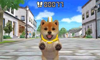 File:Puppy pedometer.jpg