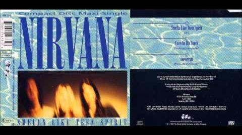 Nirvana - Smell Like Teen Spirit (Guitar Only)