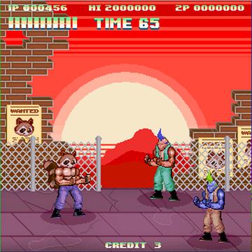 File:NES Skin Raccoon.png