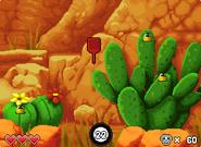 Cactus Grubs