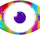 Big Brother (Kulkieperp Dêlien)