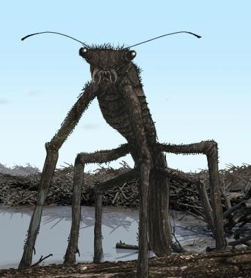 File:Stick Behebug.jpg