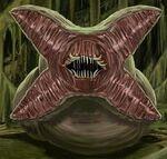 Flesh Worm