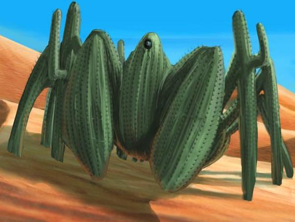 File:Spider Cactus.jpg