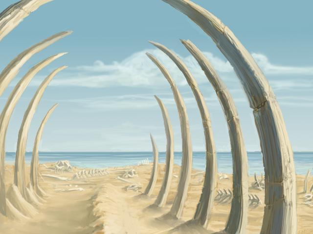 File:Skeleton Coast-Main.jpg