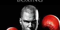 Real Boxing No Hud