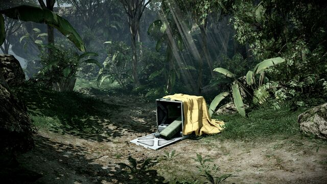 File:Battlefield Bad Company 2 No Hud.jpg