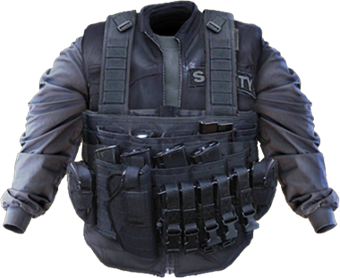 File:Bruiser Basic armor.png