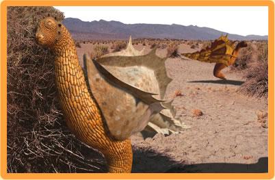 File:Deserthopper.jpg
