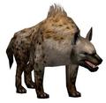 Hyena (Guild Wars)