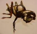 Scissor Beetle