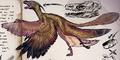 Microraptor gnarilongus