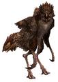 Ntouka Bird