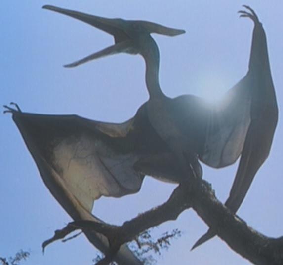 Pteranodon (Jurassic Park) | Non-alien Creatures Wiki ...