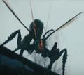 Mutant Wasp (Stung)