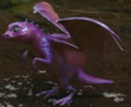 Acid-Spitting Mini Dragon