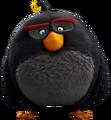 Bird bomb