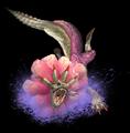 Purple Ludroth