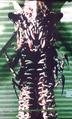 Centipede Demon (Day of Reckoning)