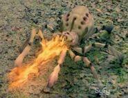 Arachnoquake4