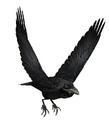 Raven (Guild Wars)
