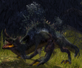Dragon Lilly