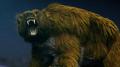 Giant Bear CGI