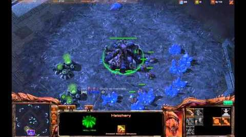 Starcraft 2 krasse Skills und Bills