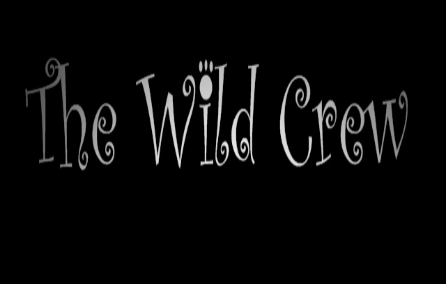 File:The Wild Crew Title Banner.jpg