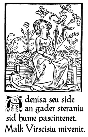 File:Adenis and Virsise 1512.PNG