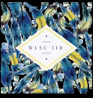 W;SC110