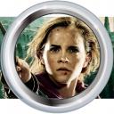Badge-13-5