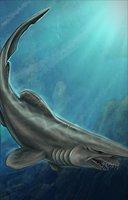 Animal shark goblin
